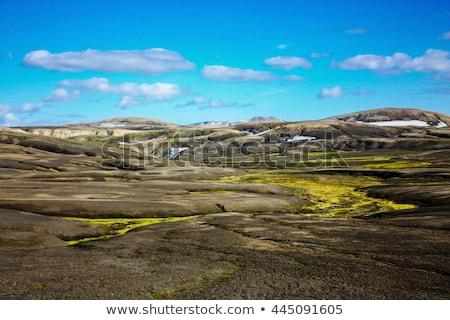 Lav manzara yosun güzel panorama büyüyen Stok fotoğraf © Hofmeester