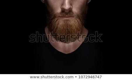 Beards Stock photo © Dashikka