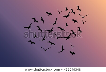 vector flock of flying birds towards bright sun Stock photo © freesoulproduction