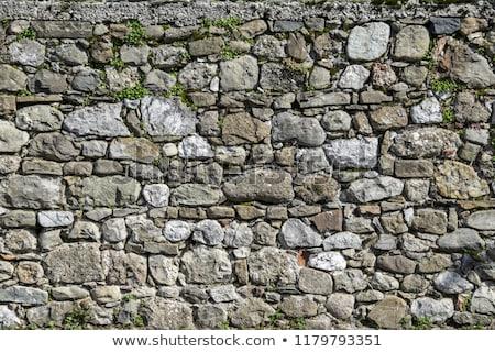 stone pavement pattern stock photo © naumoid