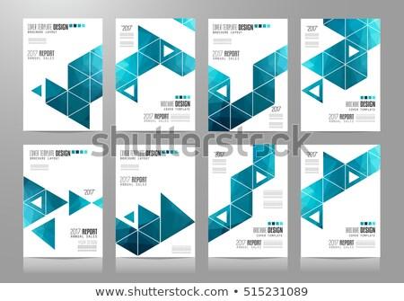 zestaw · ulotki · broszura · banner · projekty · wektora - zdjęcia stock © davidarts