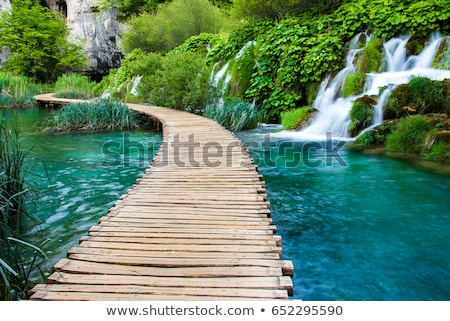 stones in the turquoise river stock photo © tasipas