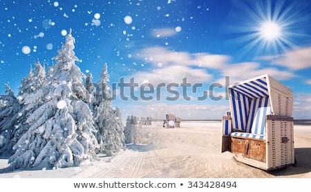 araba · karayolu · kış · gün · doğa · kar - stok fotoğraf © nobilior