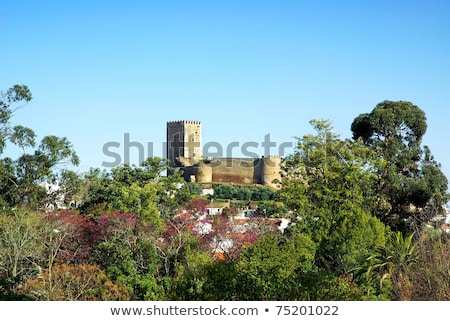 Landscape of portel garden and castle. Stock photo © inaquim