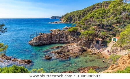 Nice detail of the Spanish coast in Costa Brava, La Fosca Stock photo © digoarpi