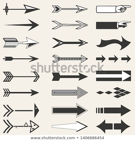 Vintage arrows in flat style icon Stock photo © studioworkstock
