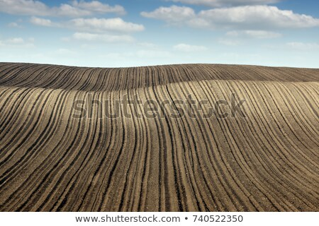 plowed fertile field panonia landscape Stock photo © goce