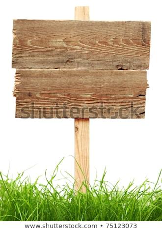 cartão · assinar · grama · isolado · branco · madeira - foto stock © inxti