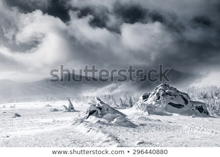 Black and white winter snow mountains in storm clouds Stock photo © BSANI