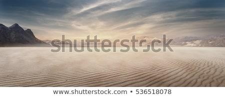 Stock fotó: Száraz · sivatag · tájkép · illusztráció · nap · művészet