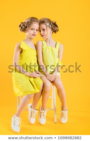 bliźnięta · portret · cute · dziewcząt · patrząc · kamery - zdjęcia stock © traimak