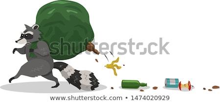 Cartoon Raccoon Running Away Stock photo © cthoman