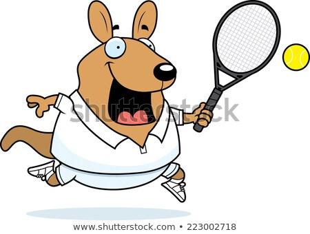 Cartoon Wallaby Tennis Stock photo © cthoman