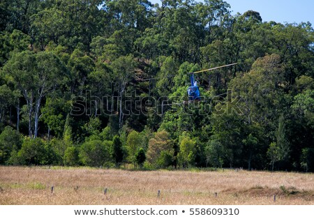 Helicopter flying over the field Stock photo © colematt