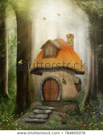 Foto stock: Cogumelo · casa · natureza · ilustração · árvore · porta