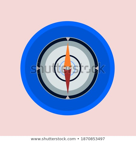 circles aim icon with star in the center, vector illustration isolated on white background. stock photo © kyryloff