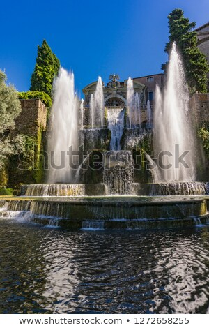 Fountain of Neptune across the fish ponds in Villa d'Este in Tiv Stock photo © boggy