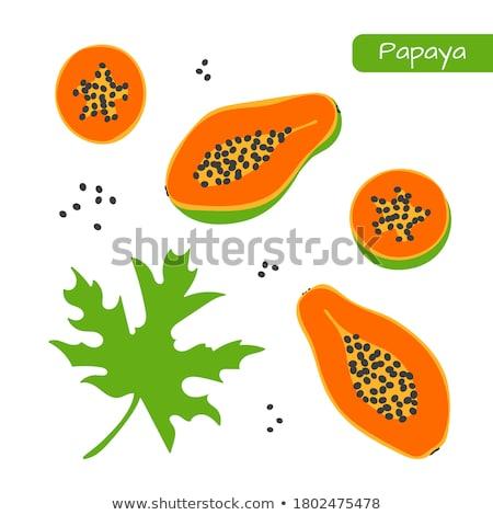 экзотический фрукты вектора изолированный все Cut Сток-фото © robuart