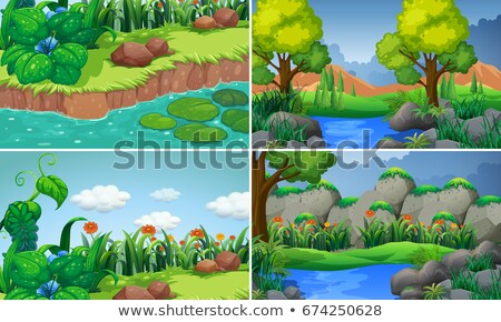 Vier vijver bos illustratie hemel landschap Stockfoto © colematt