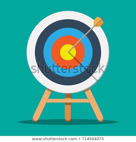 Target with Bullseye Wooden Arrow, Business Aim Stock photo © robuart