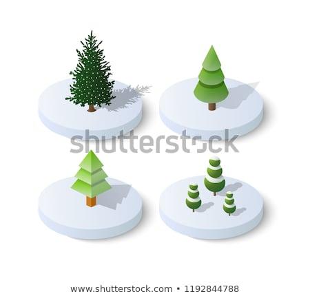 Christmas Tree Isometric Object Stock photo © Anna_leni