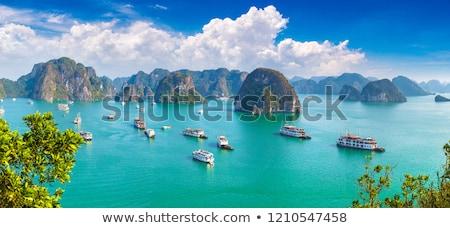 Vietnam panorama zomer dag hemel water Stockfoto © bloodua