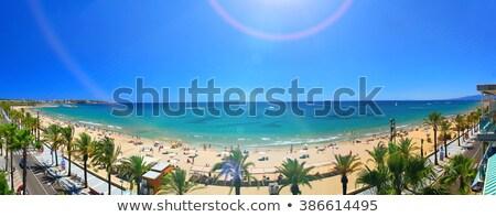 long · beach · Hiszpania · wody · miasta · morza · drzew - zdjęcia stock © lunamarina