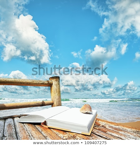 book with a seashell on the bamboo chair at the beach square co stock photo © moses