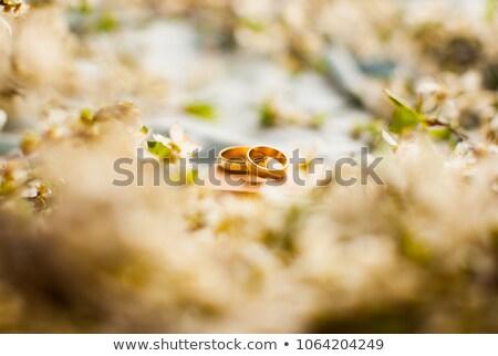 ювелирные черный закрывается петля изолированный белый Сток-фото © zhekos