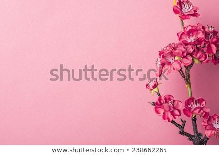 perzik · bloesem · decoratie · bloem · voorjaar - stockfoto © leungchopan