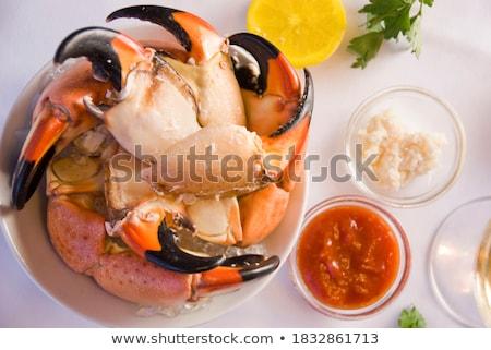 Cangrejo garra blanco Foto stock © devon