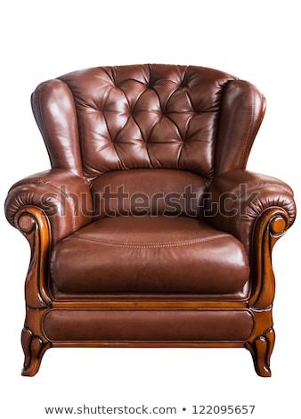Caro cuero brazo silla aislado blanco Foto stock © ozaiachin