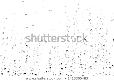 дождливый окна вектора аннотация пейзаж синий Сток-фото © experimental