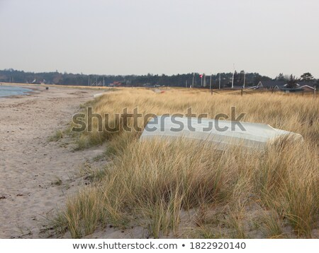 danish boat and beach shell Stock photo © compuinfoto