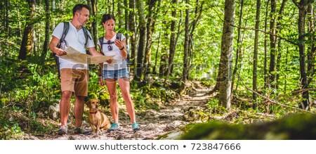 mulher · caminhadas · leitura · mapa · floresta · andarilho - foto stock © blasbike