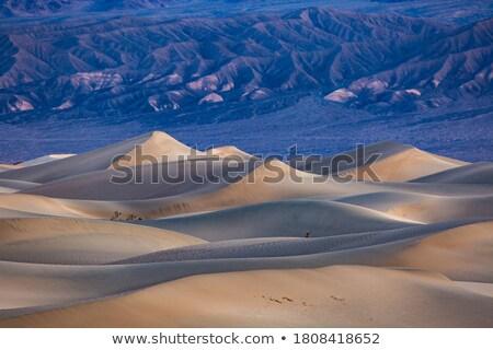 paletta · halál · völgy · út · sivatag · kék - stock fotó © meinzahn