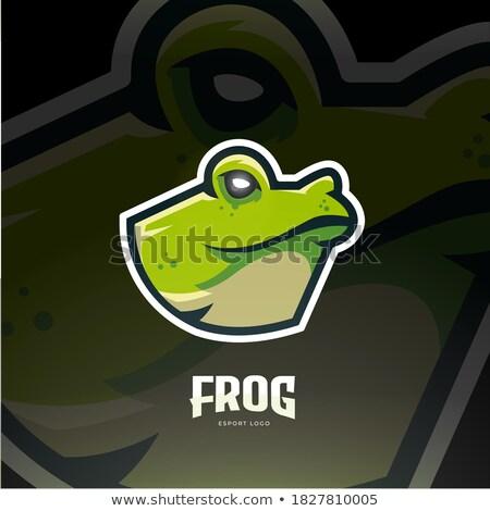 Frog Animal Head Symbol For Mascot Or Emblem Design Vector