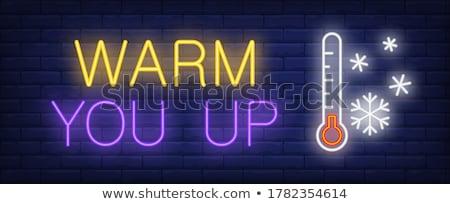 Christmas thermometer Stock photo © mayboro