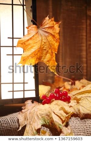decoraciones · dentro · vacaciones · celebración · agua · textura - foto stock © tab62