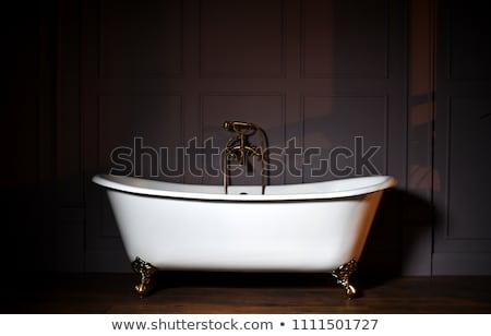 Griffe pied bain blanche salle de bain classique Photo stock © dashapetrenko