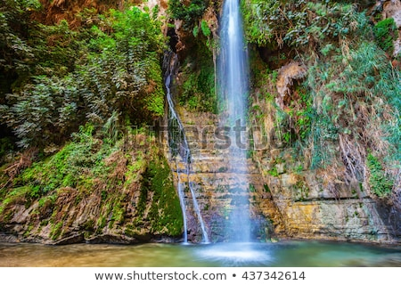 岩 浅い 池 テクスチャ 春 風景 ストックフォト © ozaiachin