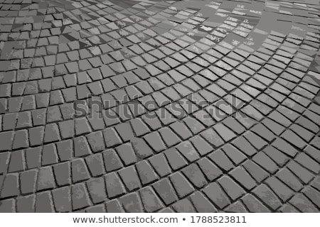 Pattern Pavement in the Form of a Trapezoid. Stock photo © tashatuvango