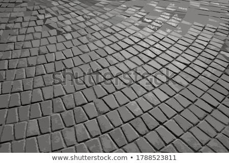 pattern pavement in the form of a trapezoid stock photo © tashatuvango
