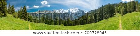 захватывающий · альпийский · Панорама · третий · озеро · воды - Сток-фото © wildnerdpix