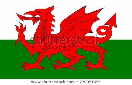 Bandera gales ilustración blanco verde ola Foto stock © Lom