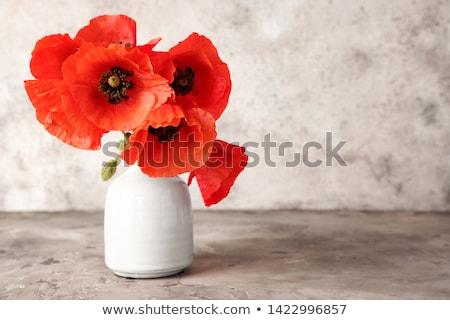 Rojo amapolas jarrón mesa de madera flor primavera Foto stock © almaje