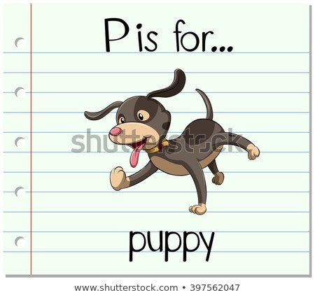 Flashcard letter P is for puppy Stock photo © bluering