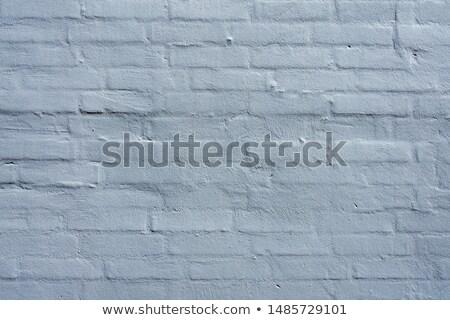 Güzel rustik perspektif tuğla duvar detay sığ Stok fotoğraf © stevanovicigor