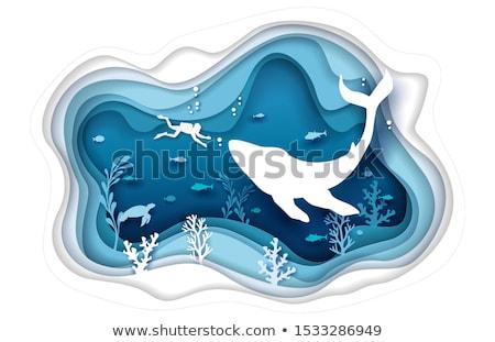 Shark in the sea vector cartoon illustration. Stock photo © RAStudio