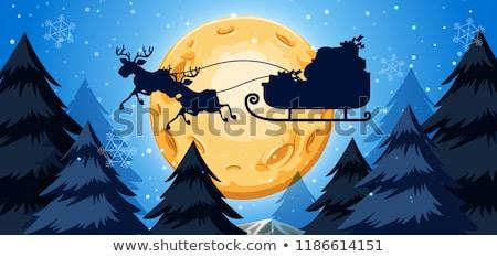 hiver · flocon · de · neige · arbre · scène · de · nuit · illustration · Noël - photo stock © bluering